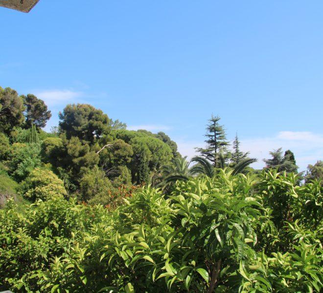 app, conca verde vista